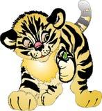Jonge tijger Stock Afbeelding