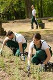 Jonge tuinlieden die in een tuin werken royalty-vrije stock foto
