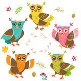 Jonge uilbaby Ð ¡ artoon Owl Character Set Besnoeiingsvector Grappige uil Stock Fotografie