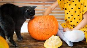 Jonge unrecognisable meisjeszitting op lijst het spelen met Halloween-pompoen en haar huisdierenkat Halloween-levensstijl stock foto