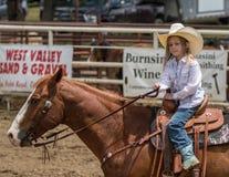 Jonge Veedrijfster bij de Rodeo royalty-vrije stock afbeelding