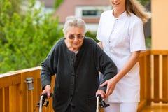 Jonge verpleegster en vrouwelijke oudste met het lopen frame Stock Fotografie