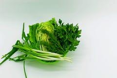 Jonge verse greens voor het koken stock foto's
