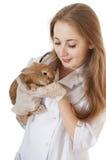 Jonge veterinaire arts met huisdieren bruin konijn. stock afbeeldingen