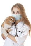Jonge veterinaire arts met huisdieren bruin konijn. stock foto