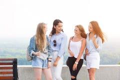Jonge vier studentenmeisjes die in het Park na Universiteit spreken De vrouwen glimlachen, verheugen zich, hebben pret op de acht stock foto's