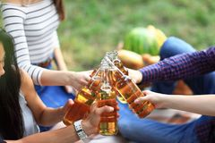 Jonge vrienden die pret hebben die in openlucht, flessen bier clinking stock fotografie