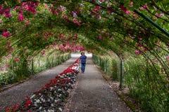 Jonge vrouw aan het eind van een roze tunnel royalty-vrije stock afbeeldingen
