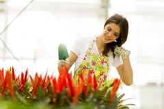 Jonge vrouw in bloemtuin Royalty-vrije Stock Afbeeldingen