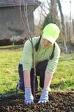 Jonge vrouw in de tuin Stock Afbeelding