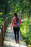 Jonge vrouw die in Bialowieza-bos, Polen wandelen royalty-vrije stock fotografie
