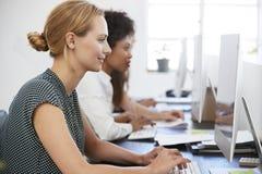 Jonge vrouw die bij computer in bureau naast collega's werken stock afbeeldingen