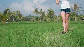 Jonge vrouw die door padieveld lopen stock videobeelden