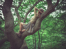 Jonge vrouw die in een boom liggen Stock Foto's