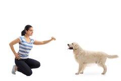 Jonge vrouw die een koekje geven aan een hond royalty-vrije stock fotografie