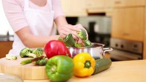 Jonge vrouw die een maaltijd voorbereidt stock videobeelden