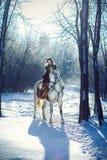 Jonge vrouw die een paard berijdt Royalty-vrije Stock Foto's