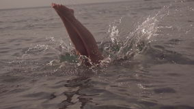 Jonge vrouw die en in overzees springen duiken Langzame Motie HD, 1920x1080 stock video