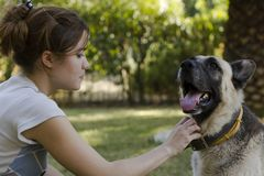 Jonge vrouw die haar hond petting Royalty-vrije Stock Afbeeldingen
