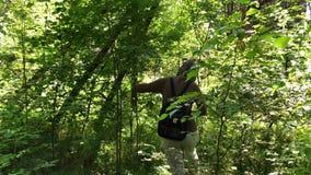 Jonge vrouw die in het bos lopen stock footage