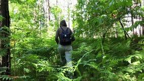 Jonge vrouw die in het bos lopen stock video