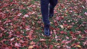 Jonge vrouw die in het de herfstpark lopen Vrouwelijke voeten close-up meisje die op gevallen bladeren lopen stock video