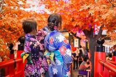 Jonge vrouw die Japanse traditionele kimono in de herfstkleur dragen met rode houten brug stock afbeelding