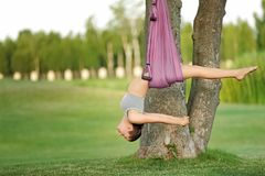 Jonge vrouw die luchtyoga op boom uitoefenen Stock Afbeeldingen