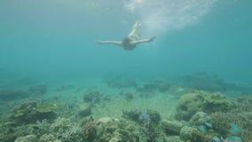 Jonge vrouw die onder tropisch vissen en koraalrif in transparante zeewater onderwatermening zwemmen Meisje in beschermende brill stock videobeelden