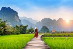 Jonge vrouw die op houten weg met groen padieveld in Vang Vieng, Laos lopen stock foto's