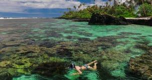 Jonge vrouw die over koraalrif op een tropisch eiland snorkelen stock videobeelden
