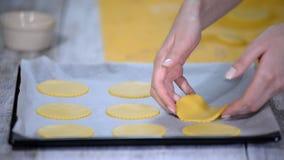 Jonge vrouw die ruwe koekjes op bakseldienblad zetten stock footage