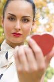Jonge vrouw die schoonheidsmiddelen op haar lippen toepast Stock Fotografie