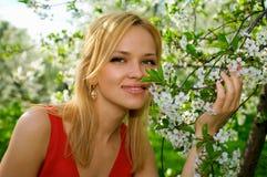 Jonge vrouw die van geur van bloeiende boom geniet stock foto's