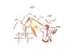 Jonge vrouw die volbloed- merrie, dierlijke zorg, huisdierenminnaar, vrouwelijke landbouwers schoonmakende hengst met vetlok kamm vector illustratie