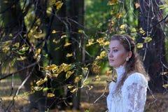 Jonge vrouw die voor de bomen kijken Royalty-vrije Stock Fotografie