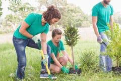 Jonge vrouw die voor de gemeenschap tuinieren Royalty-vrije Stock Fotografie