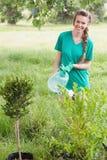 Jonge vrouw die voor de gemeenschap tuinieren Royalty-vrije Stock Afbeeldingen