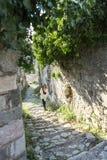 Jonge vrouw die voor een gang op oude ruïnes in Europa gaan Reiziger en blogger stock afbeelding