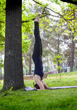 Jonge vrouw die yoga in ochtendpark doen Royalty-vrije Stock Afbeeldingen