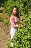Jonge vrouw die zich dichtbij een struikbessen bevinden Royalty-vrije Stock Foto