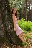 Jonge vrouw die zich in een boomboomstam bevindt Stock Afbeelding