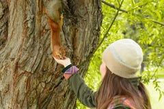 Jonge vrouw in een hoed die een eekhoorn met handnoten voeden stock fotografie