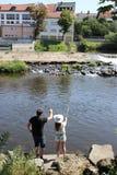 Jonge vrouw en een man terwijl visserij op een rivier in Beieren Stock Foto's