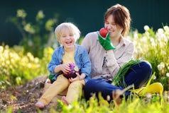 Jonge vrouw en haar aanbiddelijke kleine zoon die van oogst genieten Stock Fotografie