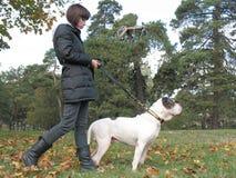 Jonge vrouw en sterke hond stock afbeelding