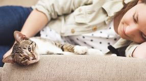Jonge vrouw geknuffelkat thuis Stock Afbeeldingen