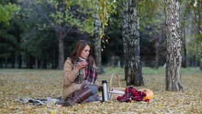 Jonge vrouw het drinken thee van een thermosfles in de zitting van het de herfstpark op een deken stock video