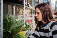Jonge vrouw het kopen installatie in tuinwinkel stock fotografie
