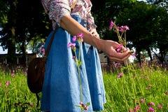 Jonge vrouw het plukken bloemen Stock Foto's